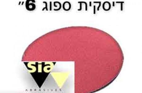 דסקית ספוג גרעינים 2000